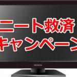 ニート救済キャンペーン発動中!【自宅で稼ぐ基本戦術】
